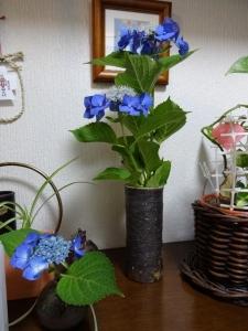 花瓶の花の持ち方