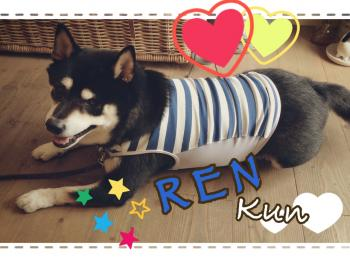 blog_1407renkun2_convert_20140828202016.jpg