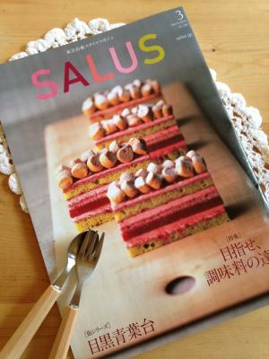 blog_salis1_convert_20140224163535.jpg