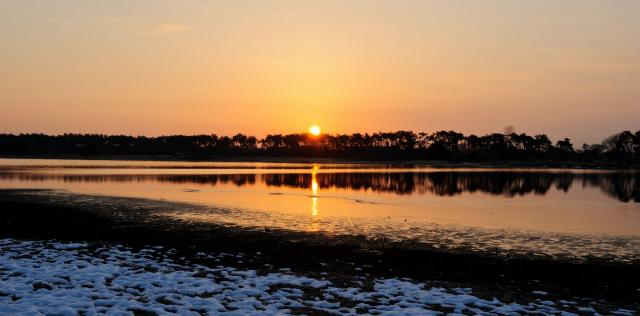 多々良沼の夜明け