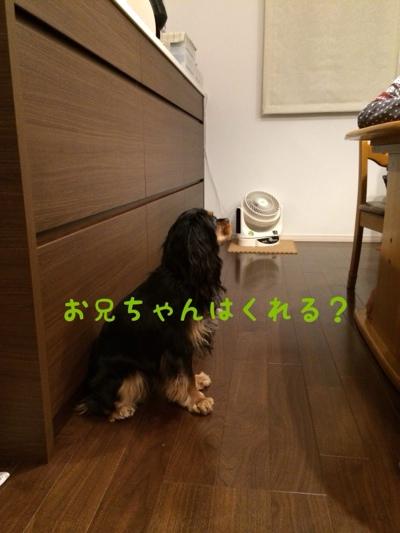 fc2blog_20140322213903124.jpg