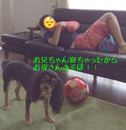 fc2blog_20140711230205216.jpg