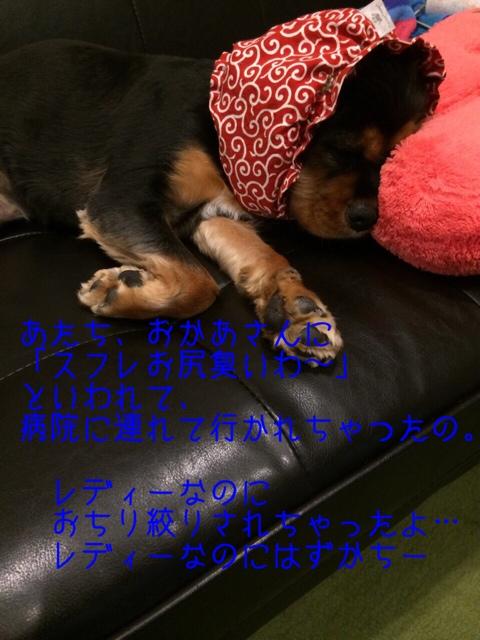 fc2blog_20140723145014212.jpg