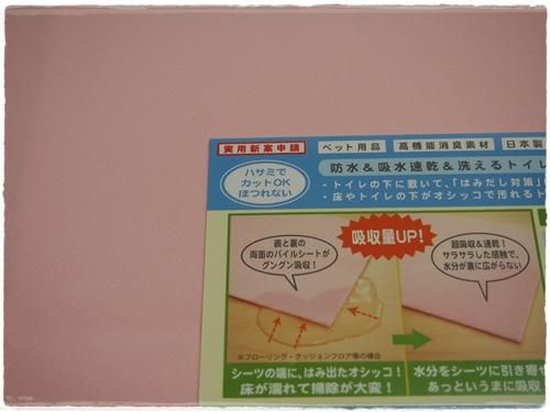 P3099924.jpg