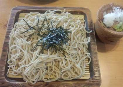 20140808_yamaneko_003.jpg