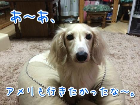 20140825241641.jpg