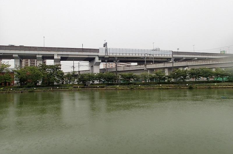 新7月2日雨の桃ヶ池公園 (0)