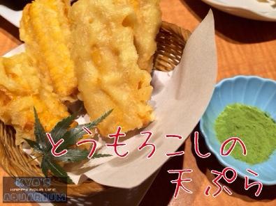 fc2blog_20140421170756fdd.jpg