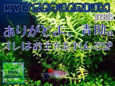 fc2blog_20140605172307a35.jpg