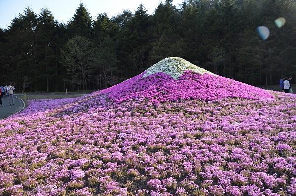 富士山めぐり_140511_5211