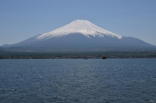 富士山めぐり_140511_5088