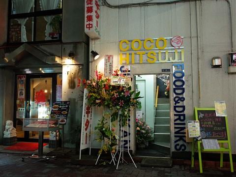 cocohitsuji14.jpg