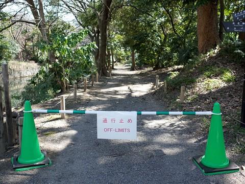 ginzasashiro15.jpg