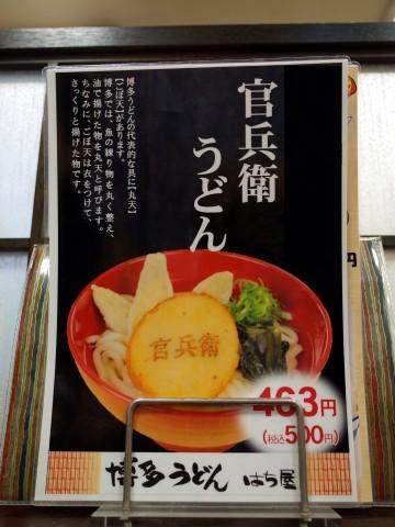 hachiyamaru13.jpg