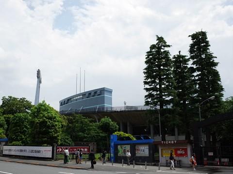 jingusaradonburi12.jpg