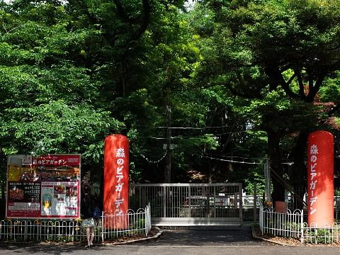 jingusaradonburi15.jpg