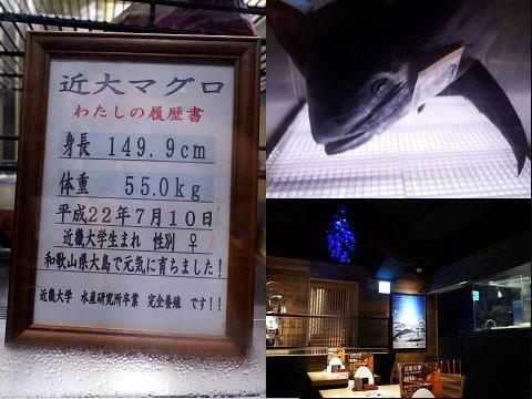kindaisashimi04.jpg