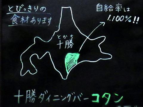 kotanopen01.jpg
