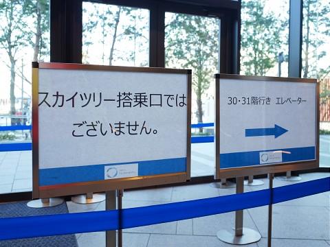 menyashachu19.jpg