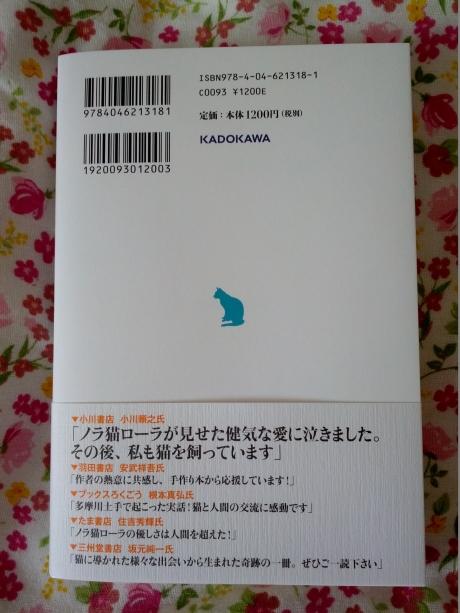 kazeninattadensyoneko_2.jpg