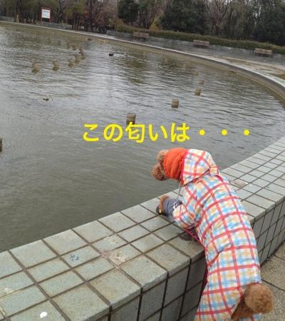 fc2blog_201403132041119cc.jpg