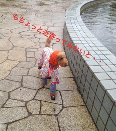 fc2blog_20140313204137108.jpg