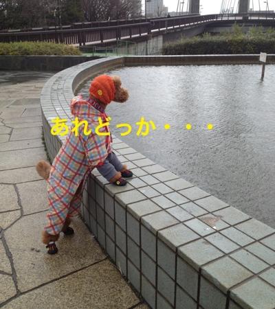 fc2blog_20140313204200825.jpg