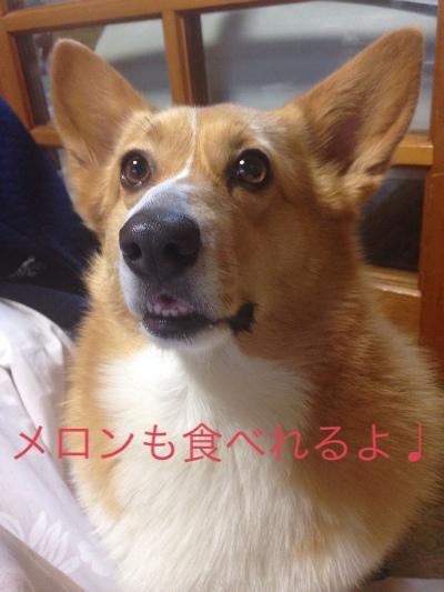 fc2blog_201404221401382e7.jpg
