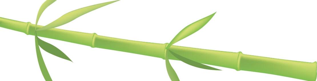 leaf0328.jpg
