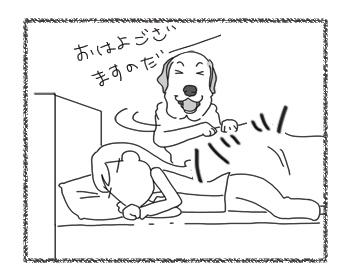羊の国のラブラドール絵日記シニア!!「漫画みたいな・・・」1