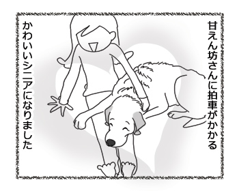 羊の国のラブラドール絵日記シニア!!「13歳のかわいいシニア」6