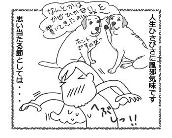 羊の国のラブラドール絵日記シニア!!「土俵際」1