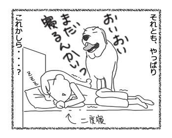 羊の国のラブラドール絵日記シニア!!「土俵際」4