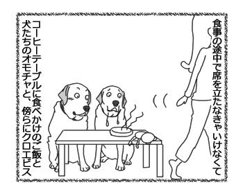 羊の国のラブラドール絵日記シニア!!「そっちかい!」1