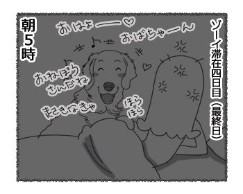 羊の国のラブラドール絵日記シニア!!「ゾーイの置き土産」4