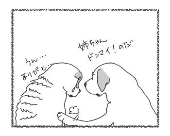 羊の国のラブラドール絵日記シニア!!「たいせつな順番」5