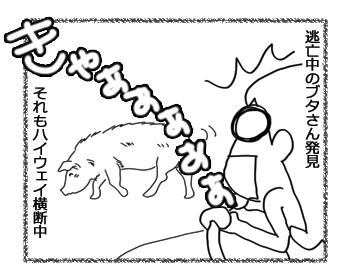 羊の国のラブラドール絵日記シニア!!「人生初の!」2