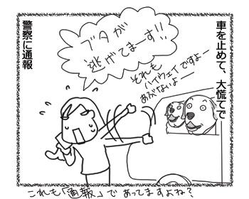 羊の国のラブラドール絵日記シニア!!「人生初の!」3