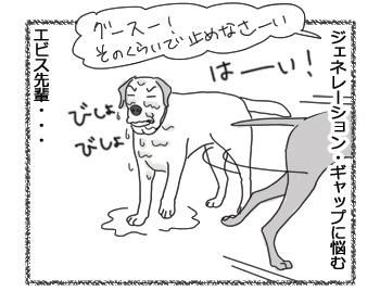羊の国のラブラドール絵日記シニア!!「先輩風大雨注意報」4