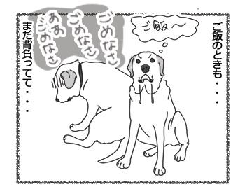 羊の国のラブラドール絵日記シニア!!「原因不明の大反省」2