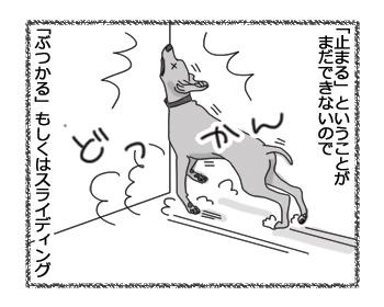 羊の国のラブラドール絵日記シニア!!「ビズラなグース」3