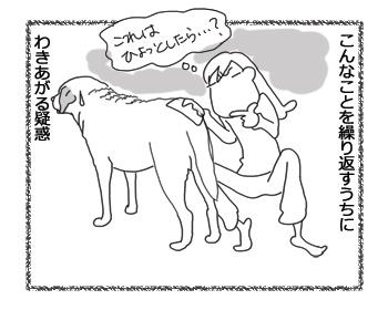 羊の国のラブラドール絵日記シニア!!「まさかな疑惑」5