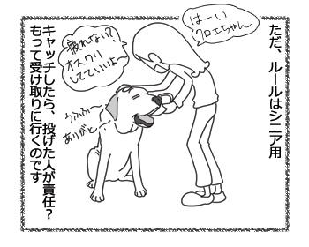 羊の国のラブラドール絵日記シニア!!「フリスビー新ルール」2