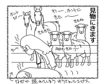 羊の国のラブラドール絵日記シニア!!「逆サファリパーク?」4