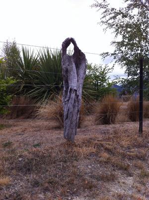 羊の国のラブラドール絵日記シニア!!「木の日」写真日記4