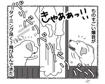 羊の国のラブラドール絵日記シニア!!「やるな!ガンドッグ」2