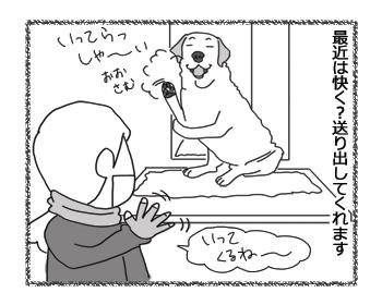 羊の国のラブラドール絵日記シニア!!「説得力ゼロ」2