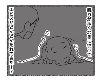 羊の国のラブラドール絵日記シニア!!「たれエビス」4