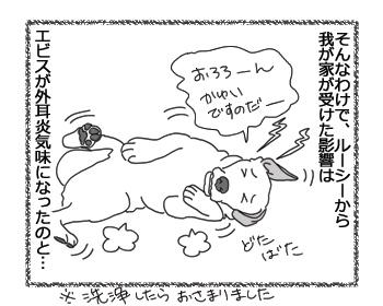 羊の国のラブラドール絵日記シニア!!「台風一過で・・・」3