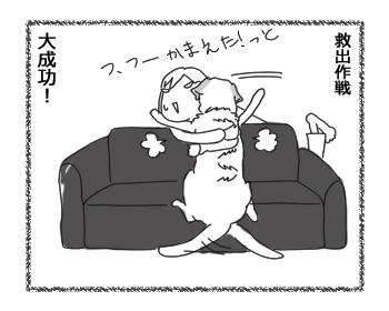 羊の国のラブラドール絵日記シニア!!「おまかせします」4